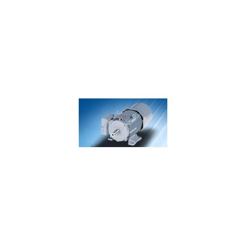 Электродвигатели с фазным ротором VEM motors