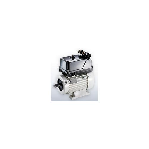 Двигатели для железнодорожных приводов VEM motors